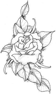 250 Drawing Roses ideas   roses drawing, drawings, rose