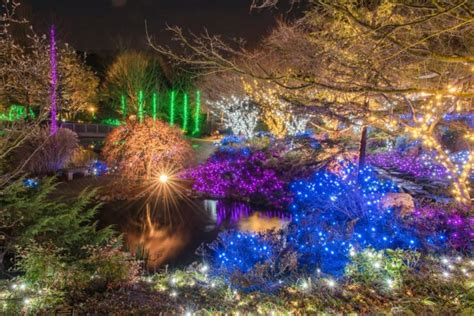 lewis ginter festival of lights 10 best light displays in virginia 2016