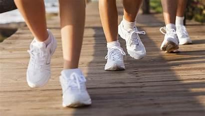 Walking Club Sneakers Programs