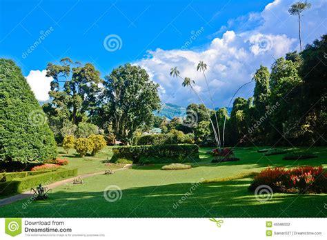 Botanischer Garten Sri Lanka by Peradeniya Garden Clipart Clipground