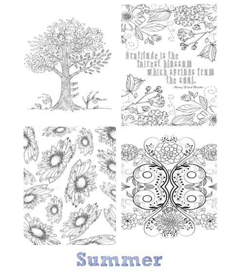 the seasons mini coloring book whispers in nature