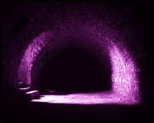 Tunnel Dark Purple Princess