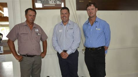 TFI Booborowie Lamb Competition draws a crowd   Stock ...