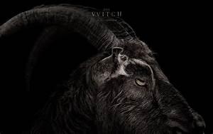 The Witch Le Film D39horreur Se Montre Dans Un Nouveau