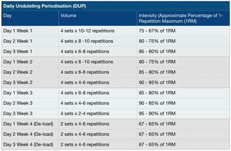 Undulating Periodization Template by Daily Undulating Periodisation Dup 101 Jc Fitness