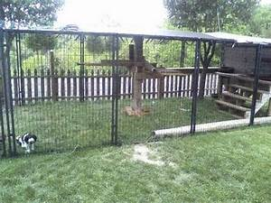 easy to make outside cat enclosure with petsafe dog With dog enclosure ideas