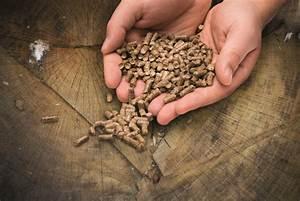 Poele A Bois Ou A Granule : poele bois po le granule ou pellet choisir un ~ Melissatoandfro.com Idées de Décoration
