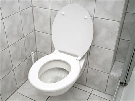 united states flushed  toilet