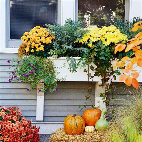 window decorations for fall fall window decorations that add curb appeal