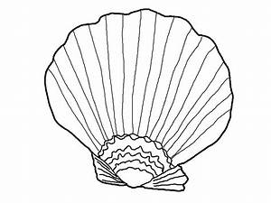 Free Printable Seashell Coloring Pages For Kids