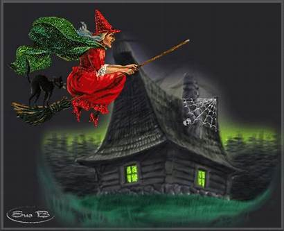 Witch Flying Halloween Haunted Glitter Witches Cat