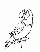 Coloring Parrot Alphabet Bird Printable Animal Animals Sheets Abc Cartoon Activity Letter B870 Sheet Parrots Abeceda Creative Cz Pp Macaw sketch template