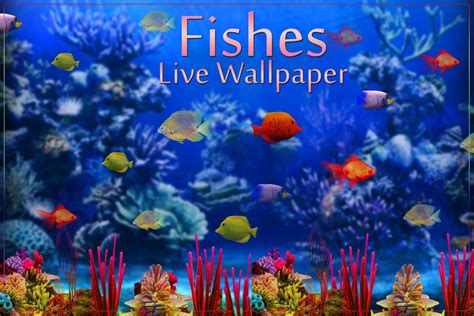 Fish Animation Wallpaper Free - animated fish wallpaper with 61 items