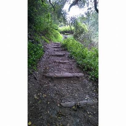 Hiking Trails Park Steps Miller Joaquin Phase