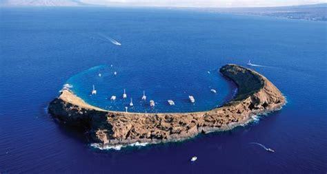 snorkel sunken volcano  westin kaanapali ocean