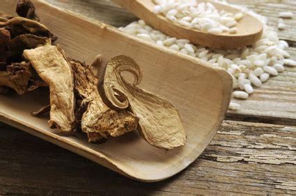 comment cuisiner les cepes cuisiner les cèpes séchés pratique fr
