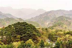 Wallpapers North Korea Nature Mountains Scenery Trees