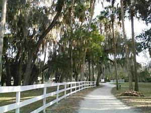 17 Best images about Gainesville FL - Alachua County on ...