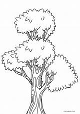 Coloring Tree Printable Pages Sheets Printables Cool2bkids Duathlongijon Christmas sketch template