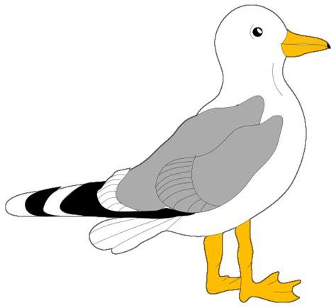 Seagull Clipart Gull Clip