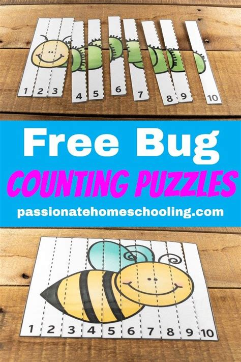 printable bug counting   puzzles  images