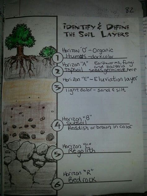 soil layers travis  grade science journal pinterest