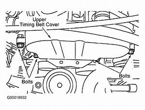 2002 Ford Escape Serpentine Belt Routing And Timing Belt