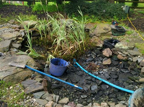 how much does a pond cost how much does it cost to clean out a koi pond turpin landscaping