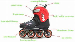 Roller Skate Club  3 Things Must Know  U0026quot Roller Skate Parts U0026quot