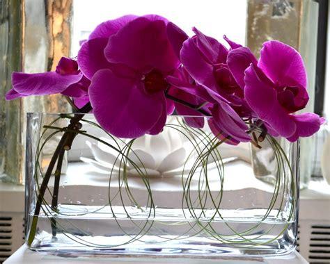 bonjour hola  modern floral milieu