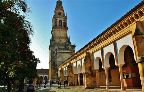 patio naranjos mezquita c 243 rdoba gu 237 as viajar