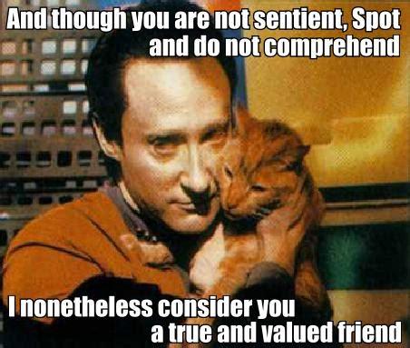 Data Star Trek Meme - 301 moved permanently