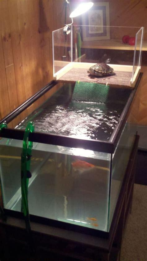 aquatic turtle basking light 17 best images about red eared slider habitat on pinterest