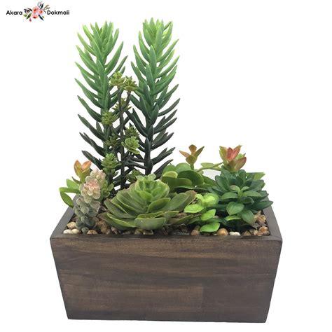 สวนจิ๋ว สวนถาด Succulent plant ไม้อวบน้ำปลอม แคคตัสปลอม ...