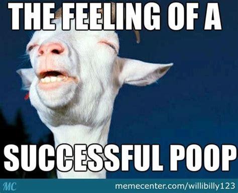 Baby Poop Meme - 17 best images about poop on pinterest dogs halloween