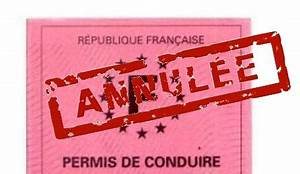 Annulation Permis De Conduire : annulation du permis ~ Medecine-chirurgie-esthetiques.com Avis de Voitures