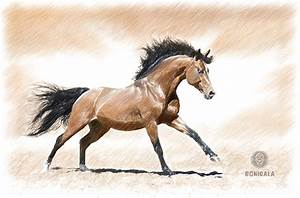 The Mind Is A Galloping Horse – Bonigalas World