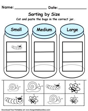 sorting  size worksheet sorting kindergarten math