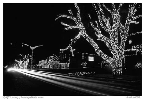 black and white christmas lights christmas decore