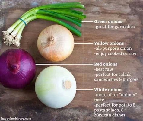 types of onions onions nutrition health pinterest