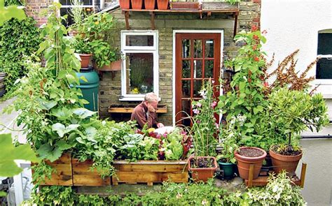 Urban Gardening How To Go Green In The City Telegraph