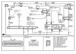 scout 800 wiring diagram turn signal scout free engine With scout 80 wiring diagram scout get free image about wiring diagram