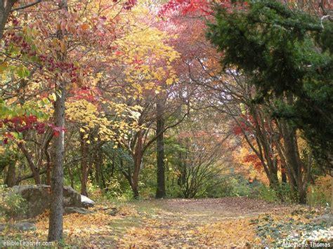 blog nature trail templates road ebibleteacher