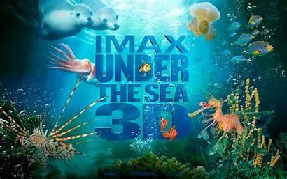 Under Sea Wallpapers Ocean Desktop Cartoon Imax