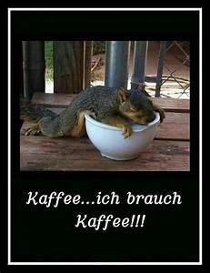 Lustige Guten Morgen Kaffee Bilder : sch nen guten morgen w nsche ich euch http guten morgen ~ Frokenaadalensverden.com Haus und Dekorationen