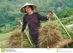 Chinese Agricultural Farm Worker Stock Photo - Image: 33356148