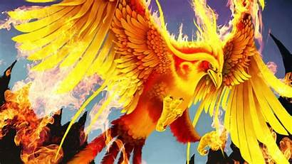 Wings Fire Wallpapers Phoenix Bird Golden Wallpaperset