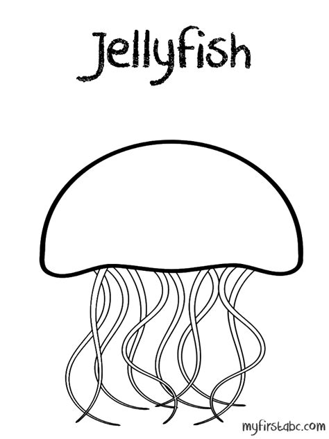 Jellyfish Coloring Page  My First Abc