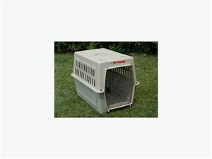 pet porter xtra large dog kennel crate charlottetown pei With pet porter dog crate large