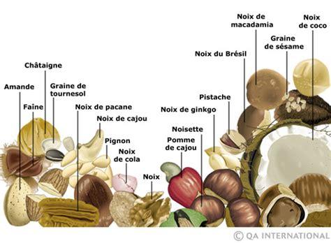 huile de coco cuisine les noix et les graines dictionnaire visuel